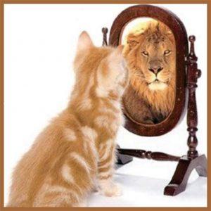 autoconhecimento