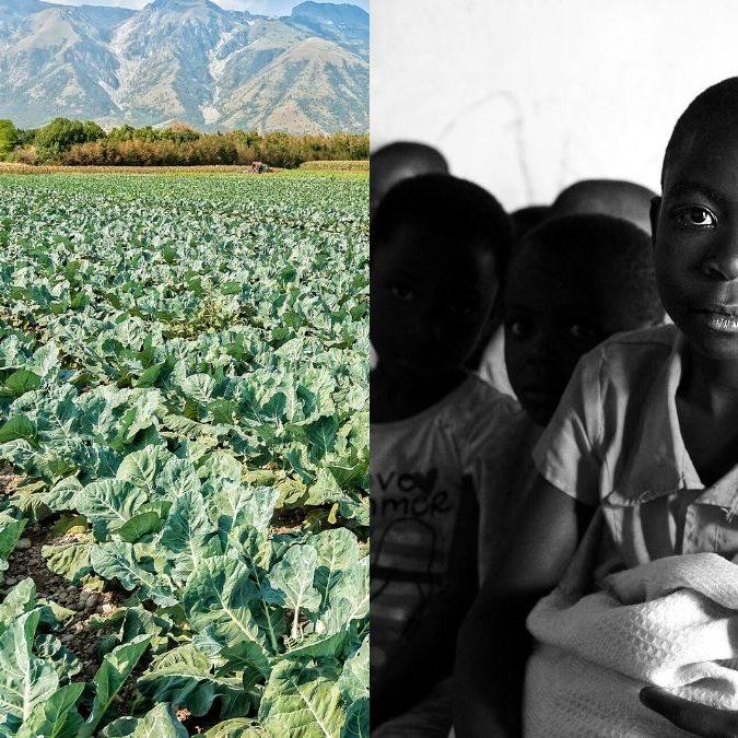 O AgroEmpreender II – Como Ajudar a Salvar Vidas!